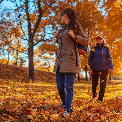 Geniet van de Herfst